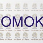 Must Read: Romoke [Episode 2]